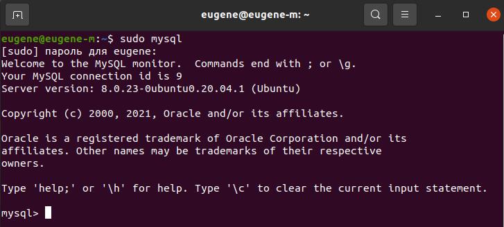 Входим в оболочку MySQL